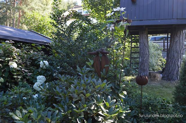 Stilleben i hagen