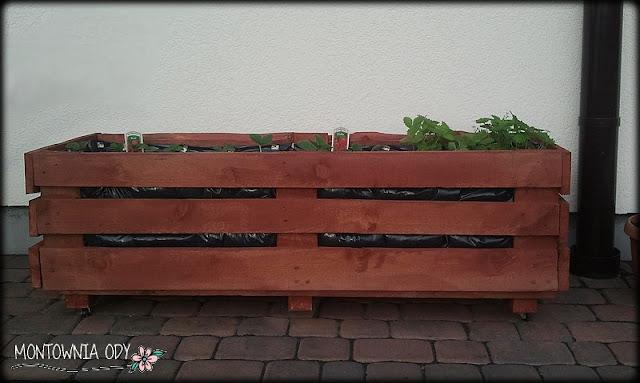 skrzynia na truskawki DIY