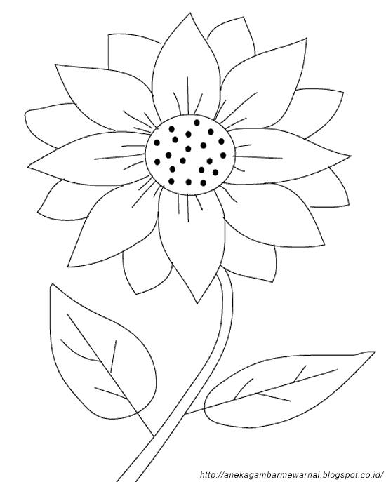 Gambar Mewarnai Bunga Matahari Untuk Anak Paud Dan Tk