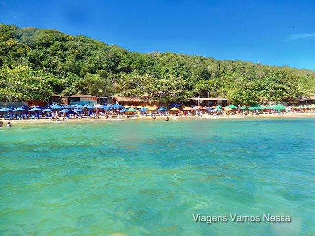 Praia da Tartaruga fica em parque estadual de preservação e Mata Atlântica