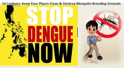 Sri Lanka Dengue Fever Symptoms Prevention and controls