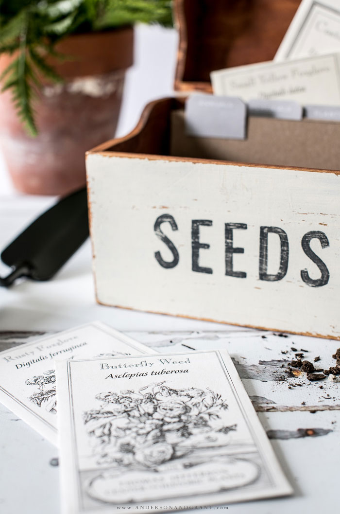 Vintage botanical print seed packets from Monticello