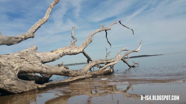 Beach, Driftwood, Florida