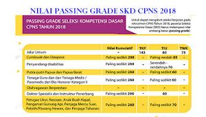 Passing Grade, SKD dan SKB dalam Tes CPNS 2019