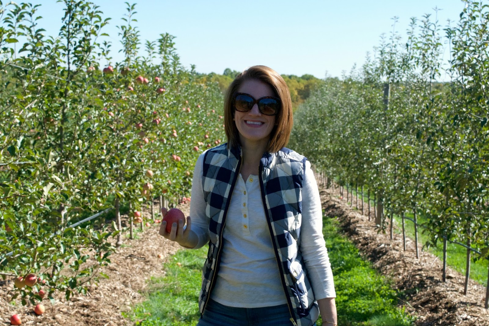 fall blogger outfit - apple picking outfit - what to wear apple picking - j.crew vest - quilted vest