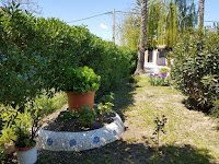 chalet en camino llombai burriana jardin