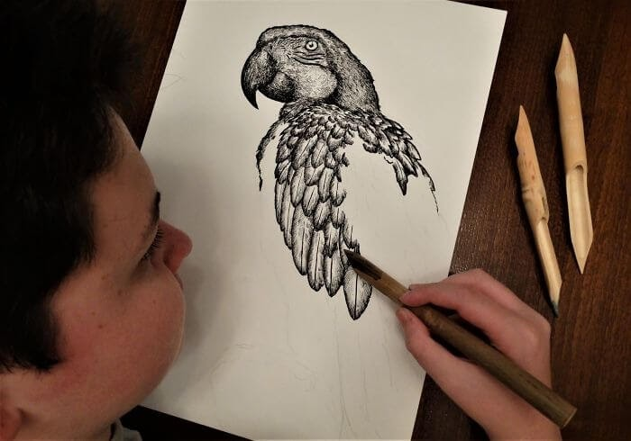 06-Parrot-WIP-Dušan-Krtolica-No-Reference-Drawings-come-from-Memory-www-designstack-co