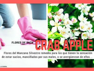 Las Flores de Bach Grab Apple para subir la Autoestima ya que no logran sus expectativas
