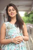 Nikki Galrani at Prema leela pelli gola trailer Launch ~  Exclusive 066.JPG