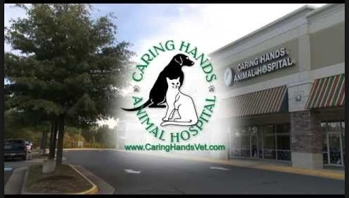 Caring Hands Animal Hospital Bristow