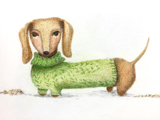 Dachshund in a green sweater colored pencil illustration - by Amy Lamp