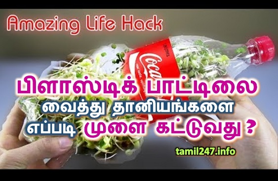 Sprouting with the help of waste plastic bottle( coca cola 1 litter cold drink bottle) life hack. How to plant grains with a plastic bottle?, Kuppayil thooki eriyum plastic bottle vaithu eppadi thaniyangalai mulai kattuvadhu