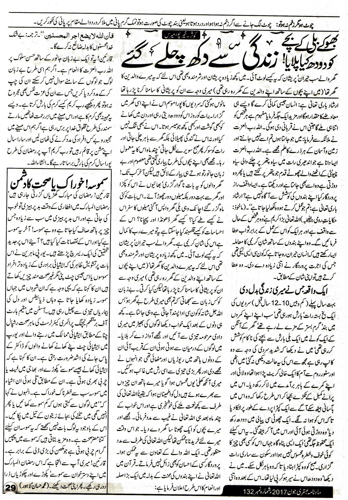 Page 29 Ubqari Magazine June 2017