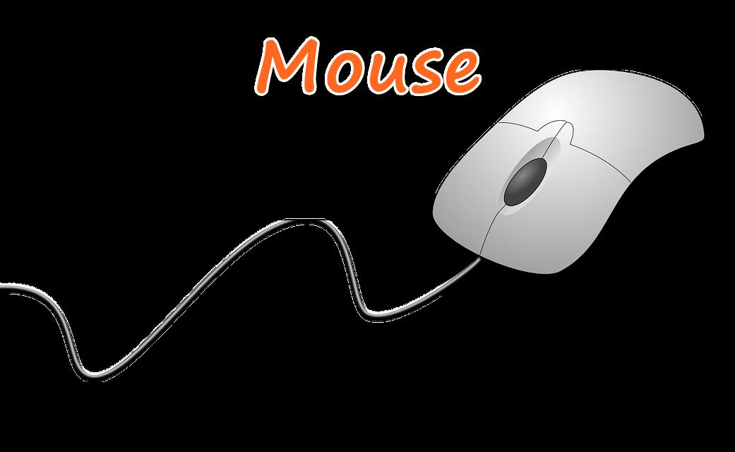 mouse-ki-jankari-hindi-me