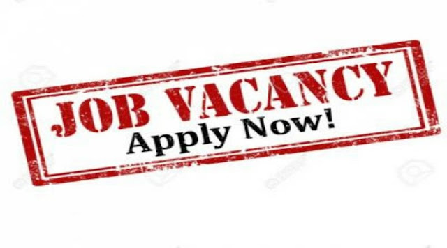 phed-recrument-2018-38-posts-such-as-do-apply.