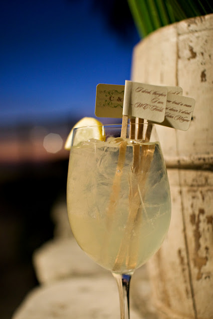 DIY drink stirs on Oh Lovely Day