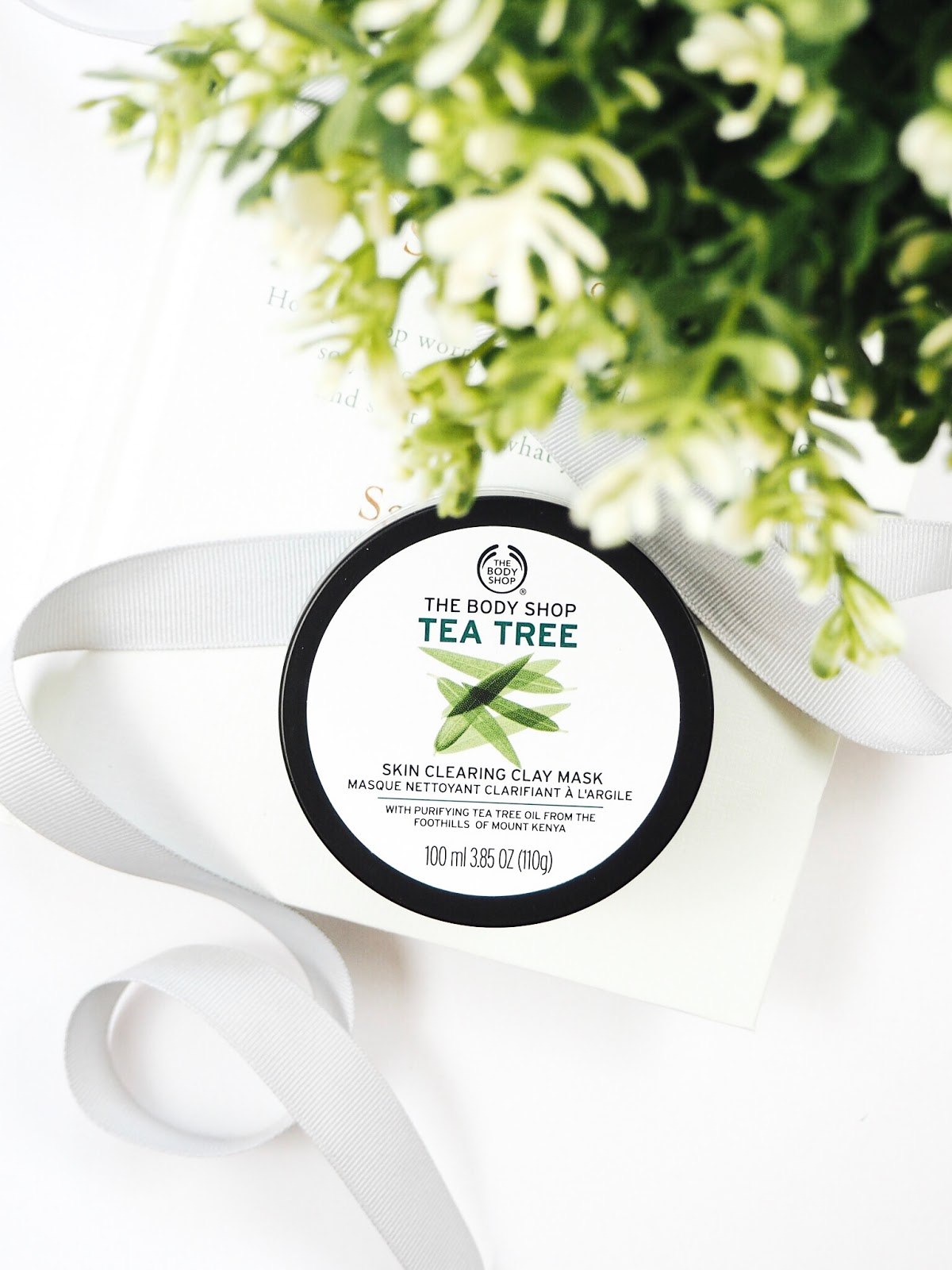 The Body Shop's Tea Tree Skin Clearing Clay Face Mask flatlay on a book with silver ribbon and an IKEA fake plant with a white background