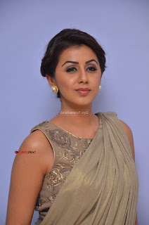 Nikki Galrani in Saree 069.JPG