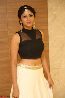 Roshni Prakash in a Sleeveless Crop Top and Long Cream Ethnic Skirt 124.JPG