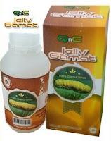 Obat Ginjal Bocor, Ramuan Tradisional Ginjal Bocor paling ampuh