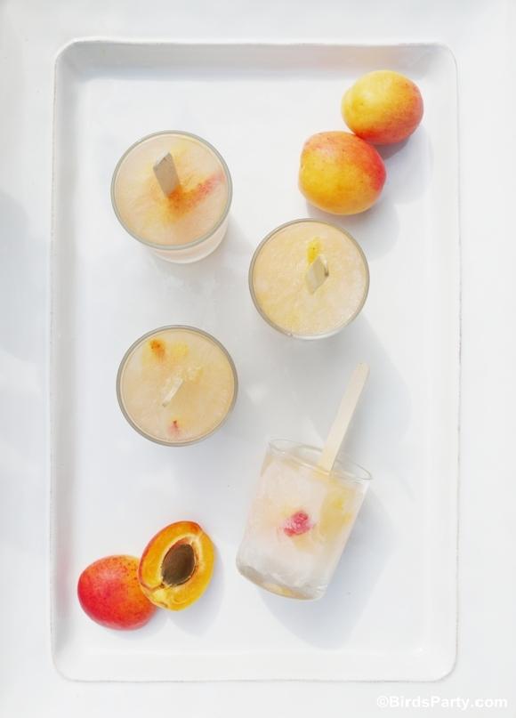 3 Recettes de Sucettes Glacées & Fruitées | BirdsParty.fr