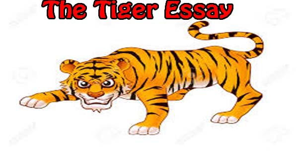 essay tiger kids Marketing to kids: why & how marketers target kids before discussing why and how marketers target kids, let us look at these facts:  companies spend about $17 billion annually marketing to children, a staggering increase from the $100 million spent in 1983.