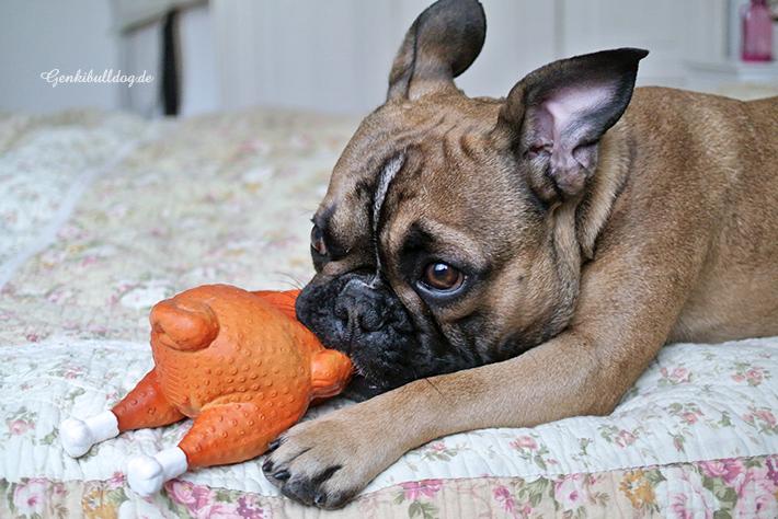 Brathähnchen Hundespielzeug