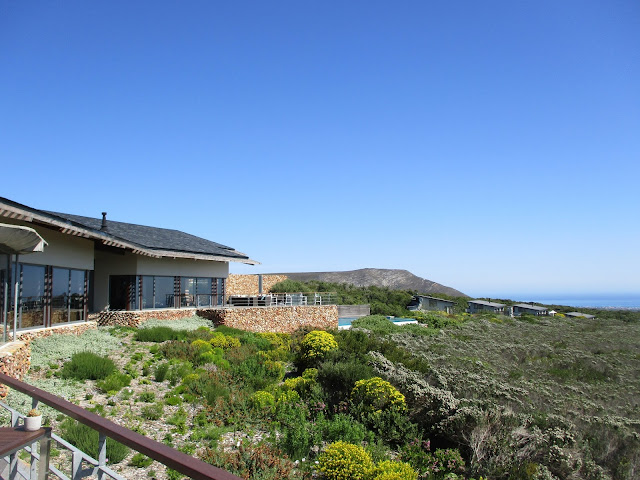 Grootbos: Natural Paradise by the Sea (Part One)