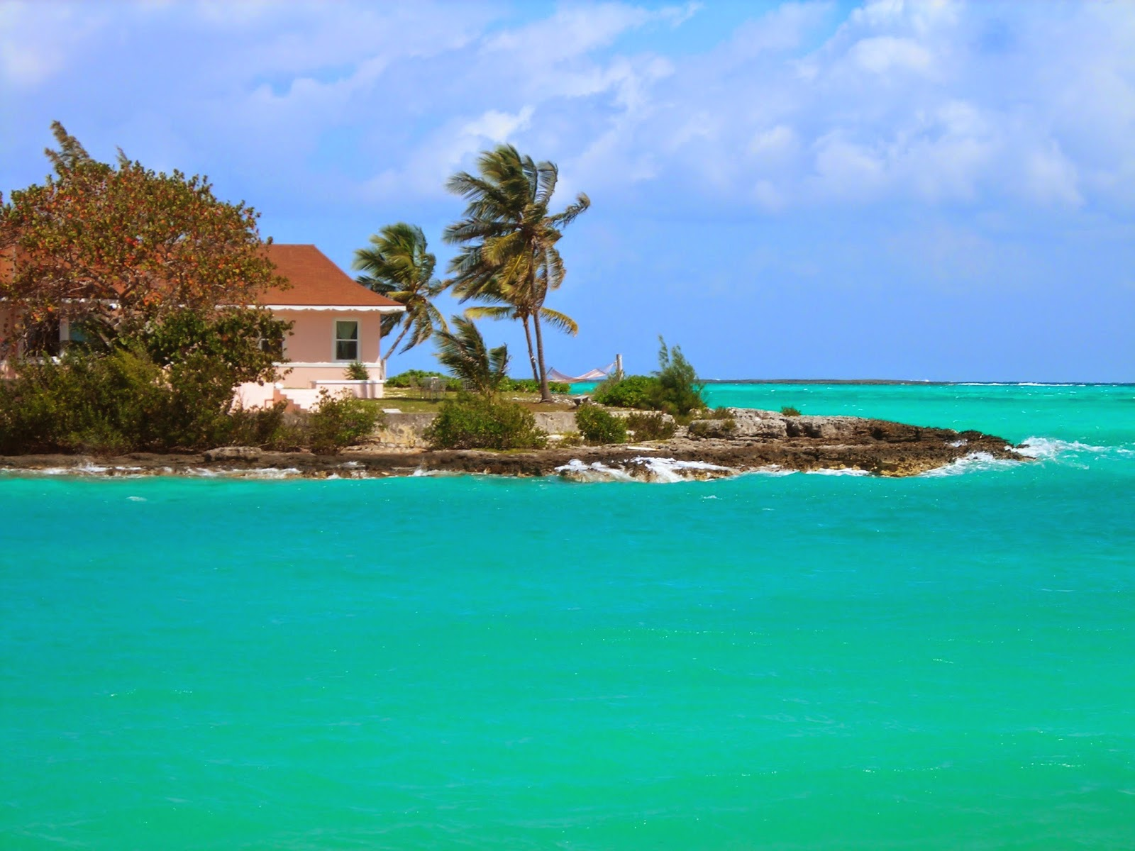 Fresh Colors 6 Reasons Why You Should Visit Andros Island Bahamas