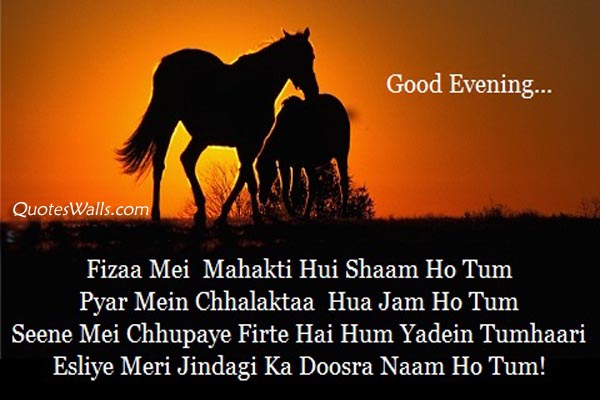 Good Evening Shayari In Hindi Whatsapp Status Pictures