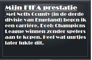 Mijn FIFA prestatie