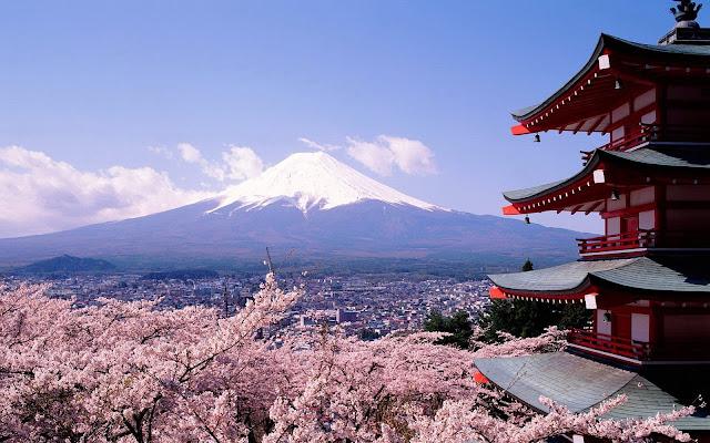 Excursió al Mt. Fuji, als 5 llacs i al bosc dels suïcidis