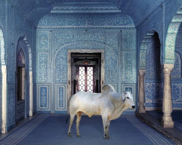 Samode Palace Jaipur Room Rates