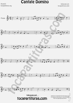 Partitura de Cantate Domino de G.F.Haendel por voz, flauta. Pronto sus partituras para otros instrumentos melódicos y tablaturas de guitarra (muy pronto)
