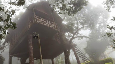 Tree House Honeymoon Package in Munnar ( Tree House with Bath Tub)