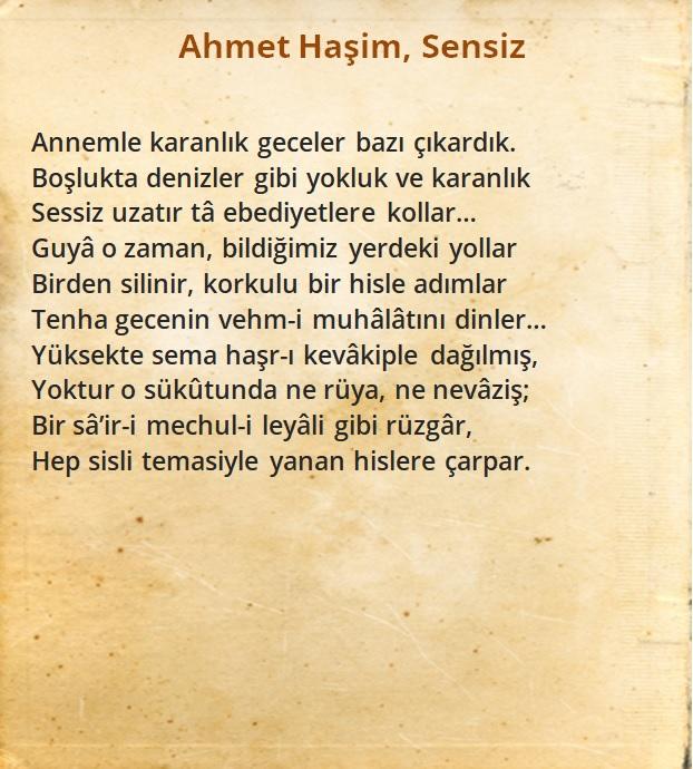 Ahmet Haşim, Sensiz Şiiri