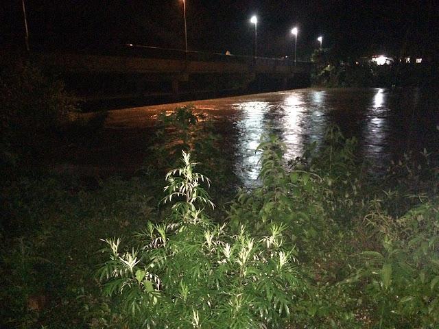 Nível do Rio Ribeira sob acima do normal e deixa desabrigados em Ribeira-SP