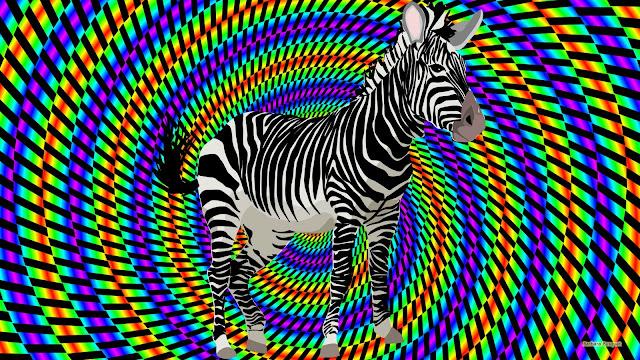 Kleurrijke wallpaper met zebra