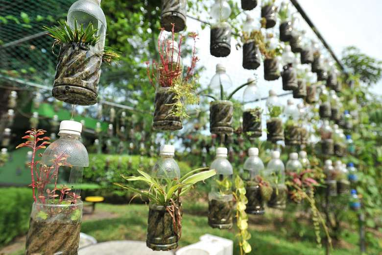 Big on recycling: The community garden in Jurong's Chinese Garden uses plastic bottles (above) and old shoes (above left, with volunteer Madam Ang Hor Cheoh) as containers for plants.