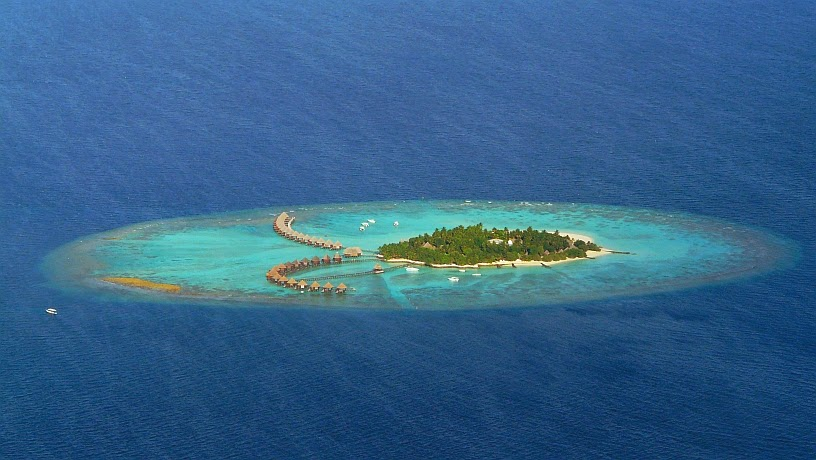 surfari maldivas atolon04