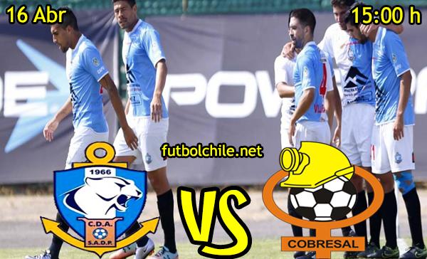 VER STREAM RESULTADO EN VIVO, ONLINE: Deportes Antofagasta vs Cobresal