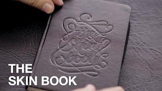 the skin book 1