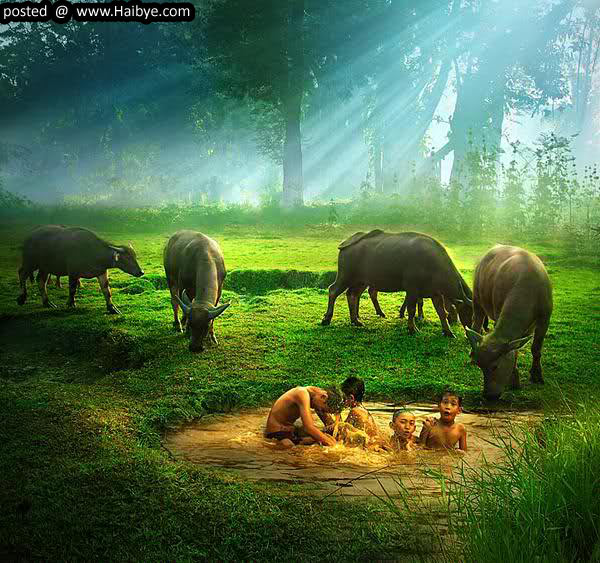 Beautiful Nature Image: All Photos Gallery: Photographs Of Beautiful Nature