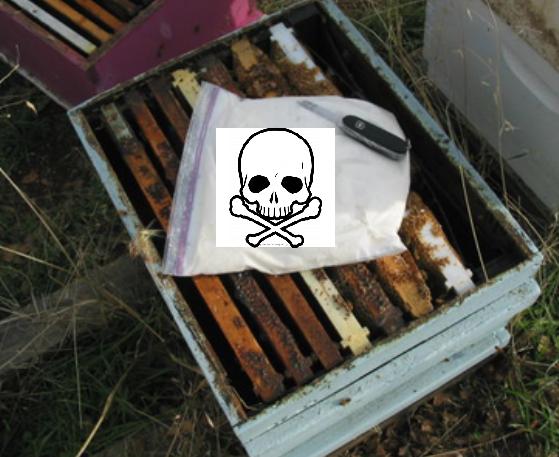 Βόμβα: Μελισσοτροφές του εμπορίου βρέθηκαν τοξικές για τις μέλισσες: ΕΔΩ ΚΑΙ 5 ΧΡΟΝΙΑ ΤΟ ΑΠΘ ΣΙΩΠΑ
