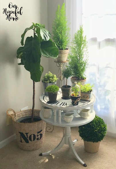 table plants basket plant holder fiddle leaf fig tree
