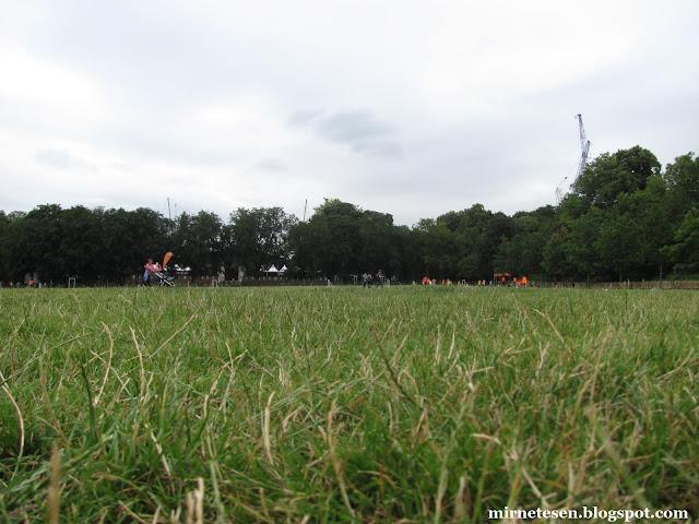 Один день в Лондоне: Хоулэнд-Парк
