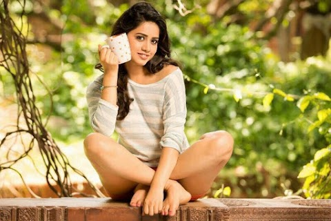 Nannu Dochukunduvate Actress Nabha Natesh Next Movies Details