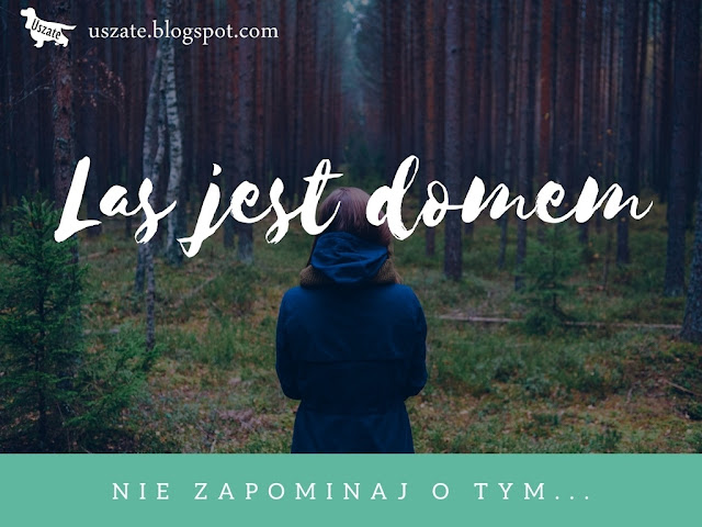 Las jest domem cz.I