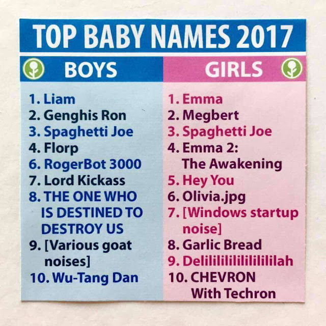 Funny Top Baby Names List Picture