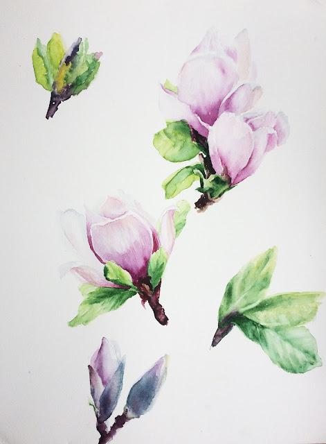 Akvarel magnoliya | Inna Yakusheva's blog